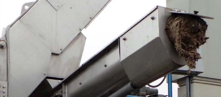 convoyeur compacteur pour les refus de dégrilleurs en station d'épuration